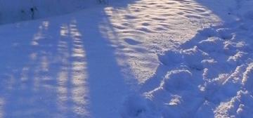 Spuren im Schnee | Foto: Martin Krauß