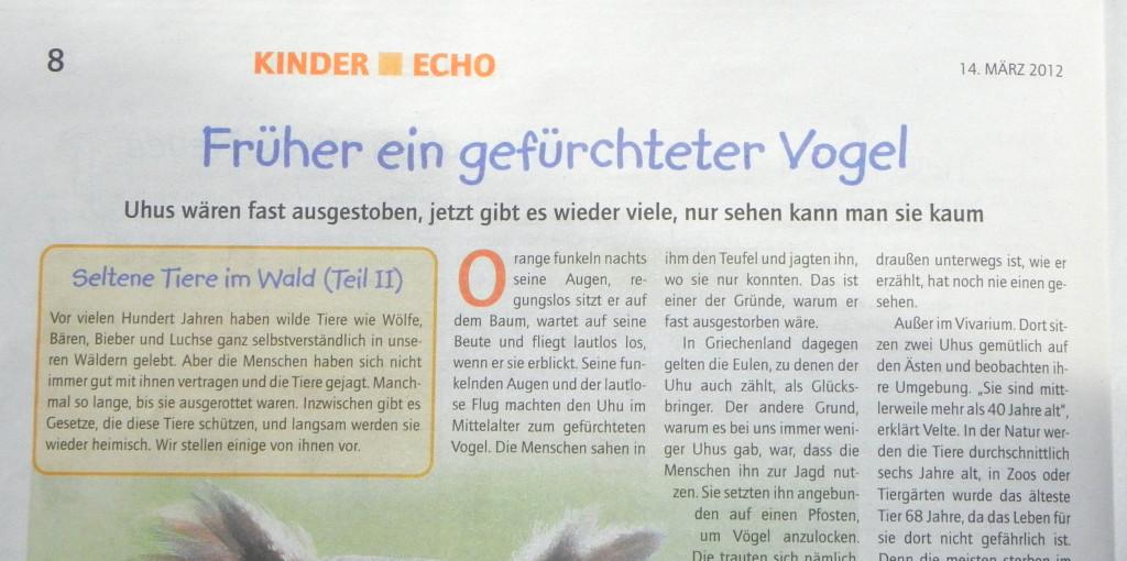 Foto der oberen Halbseite des Kinder Echo, Ausgabe März 2012
