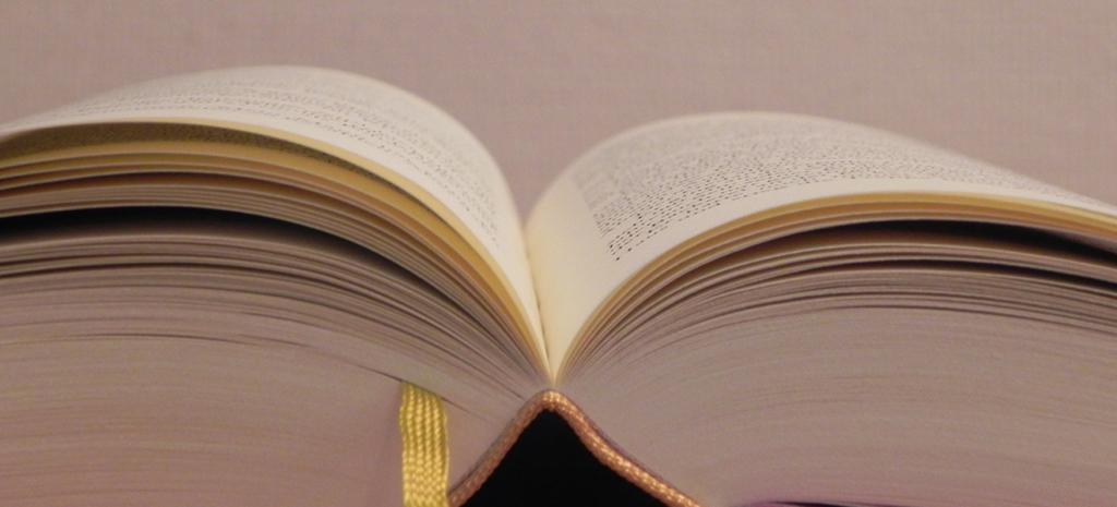 Lesestoff für Leseratten: Das Jahr 2017 hat einiges zu bieten| Foto: Martin Krauß
