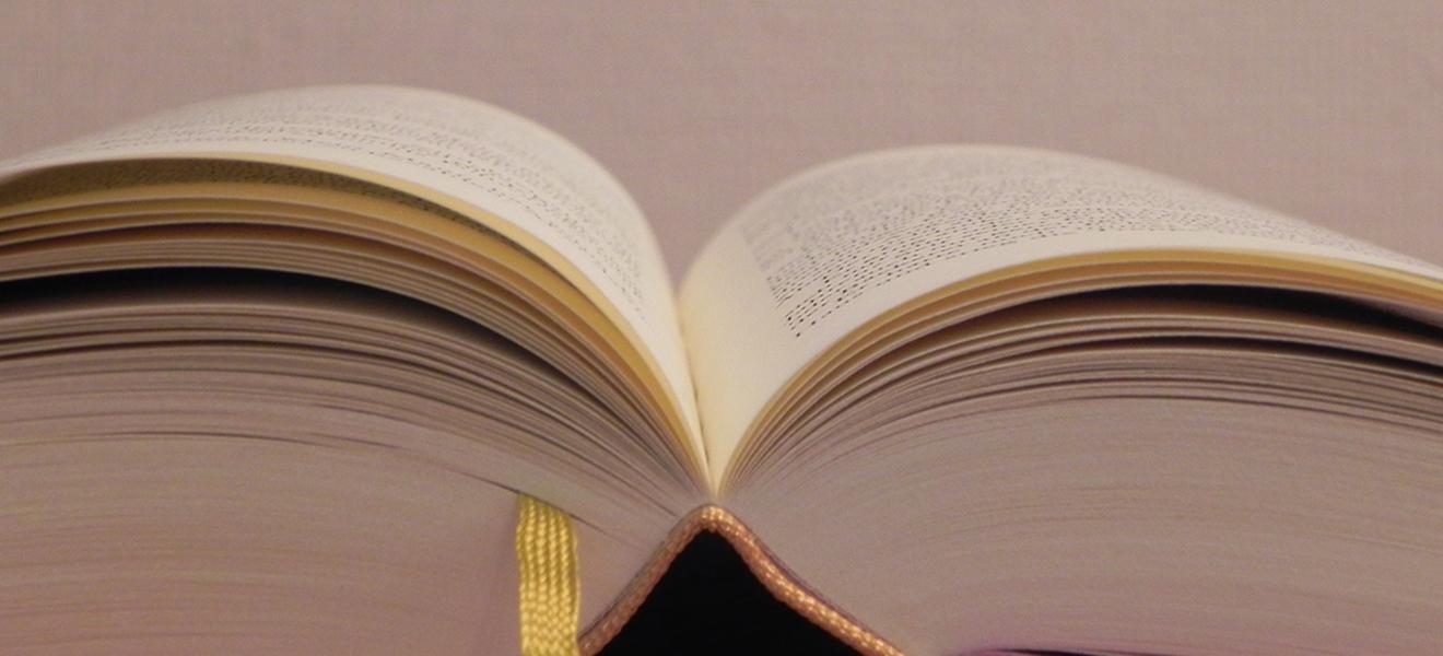 Lesestoff für Leseratten: Ein aufgeschlagenes Buch | Foto: Martin Krauß