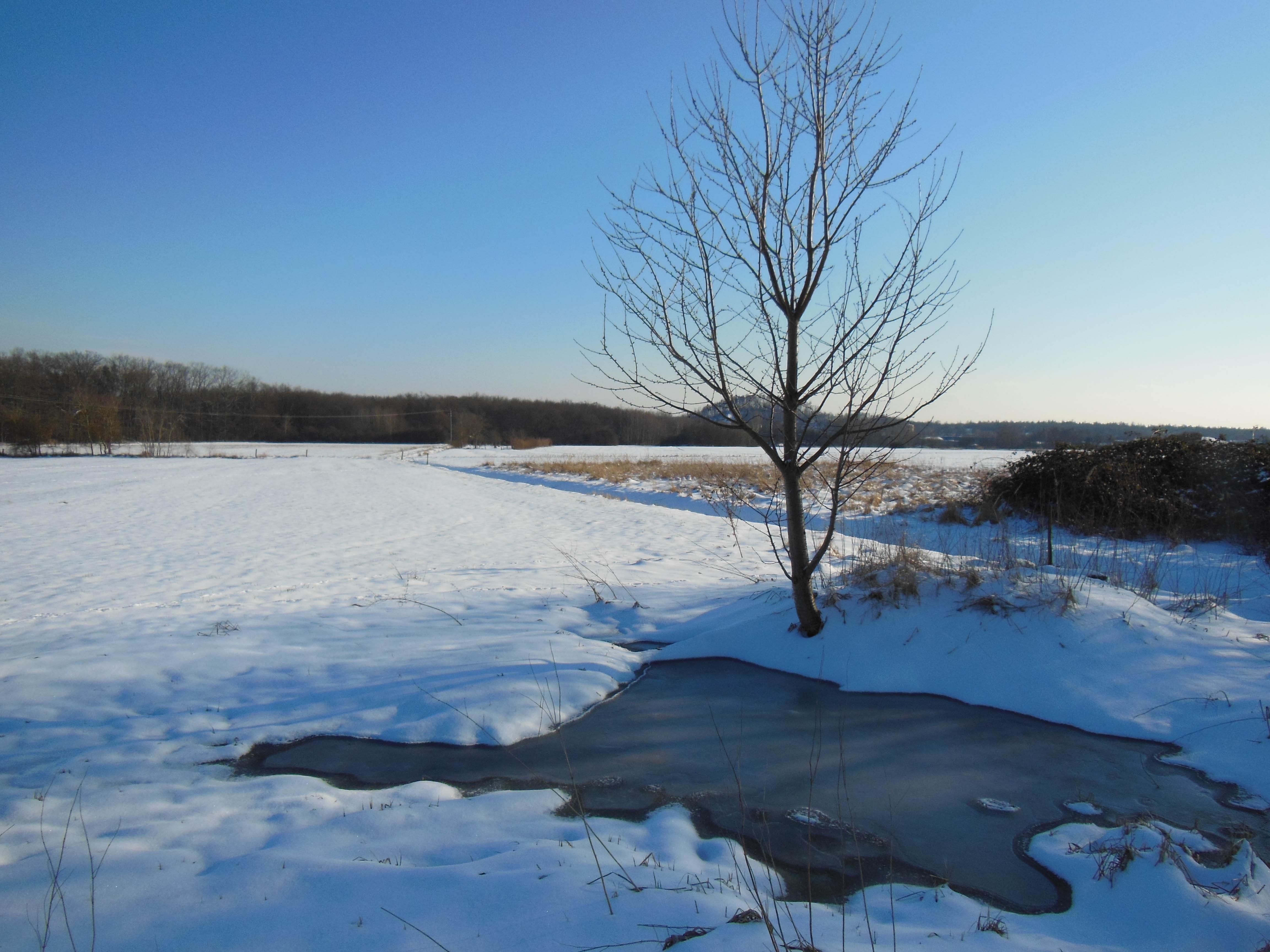 Einsamkeit in weiter Winteridylle